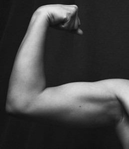 leucine triggers muscle growth