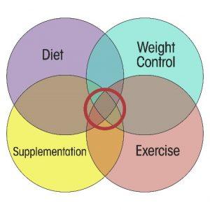 holistic approach diabetes reduce